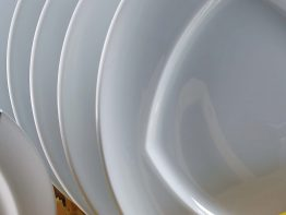 Front Loading dishwashers Zanussi Professional